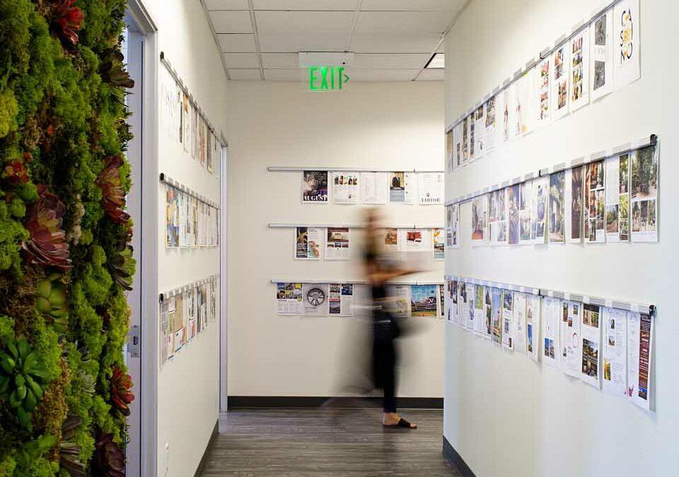Office Design Tips & Tricks